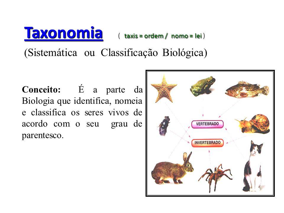 Taxonomia taxis = ordem / nomo = lei Taxonomia ( taxis = ordem / nomo = lei ) (Sistemática ou Classificação Biológica) Conceito: É a parte da Biologia