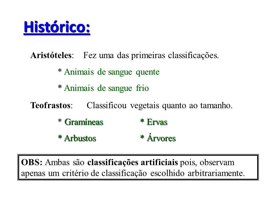 Histórico: Aristóteles: Fez uma das primeiras classificações. Animais de sangue quente * Animais de sangue quente * Animais de sangue frio Teofrastos: