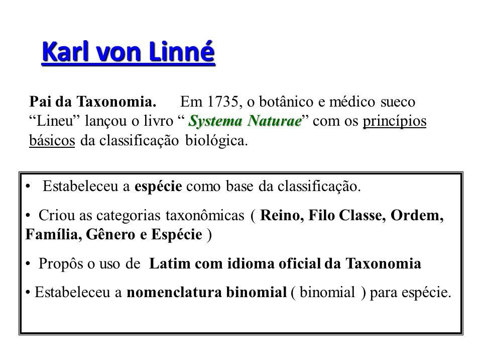 As 8 Categorias Atuais 1.DOMINIO (Archea, Bacteria, EuKarya, ) 2.REINO 3.FILO OU DIVISÃO 4.CLASSE 5.ORDEM 6.FAMILIA 7.GENERO 8.ESPÉCIE Unidade natural de classificação.