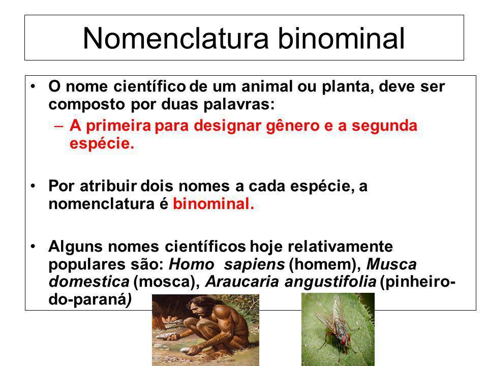 Nomenclatura binominal O nome científico de um animal ou planta, deve ser composto por duas palavras: –A primeira para designar gênero e a segunda esp
