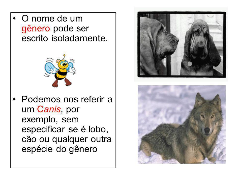 O nome de um gênero pode ser escrito isoladamente. Podemos nos referir a um Canis, por exemplo, sem especificar se é lobo, cão ou qualquer outra espéc