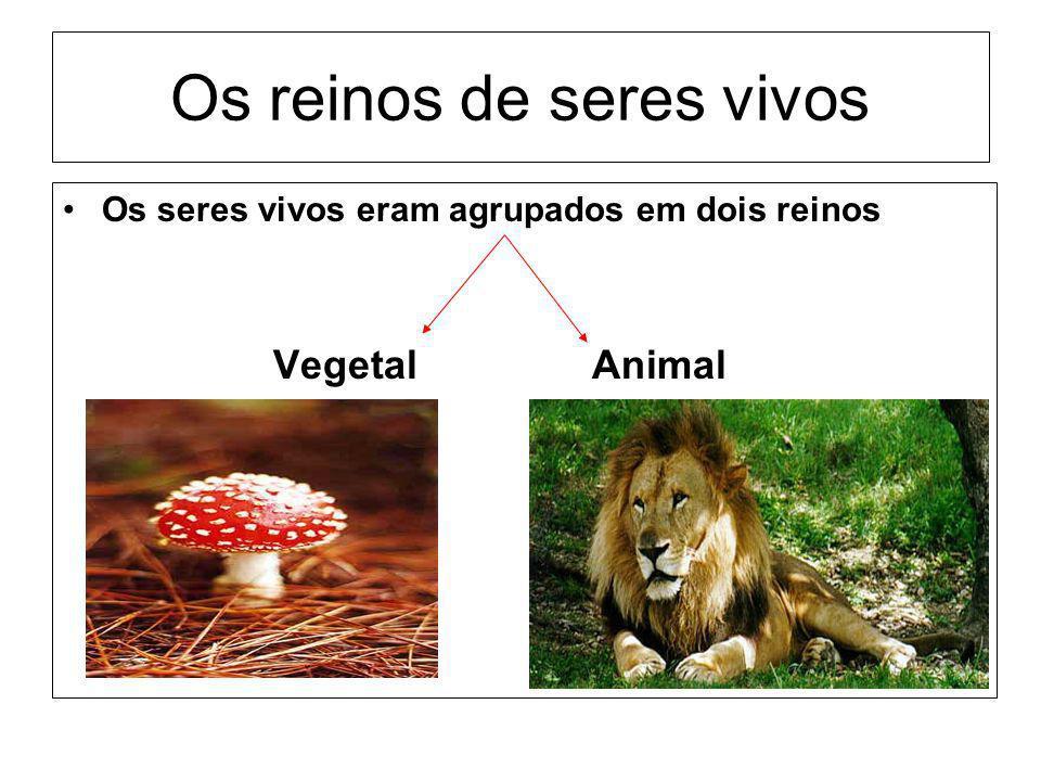 Os reinos de seres vivos Os seres vivos eram agrupados em dois reinos Vegetal Animal