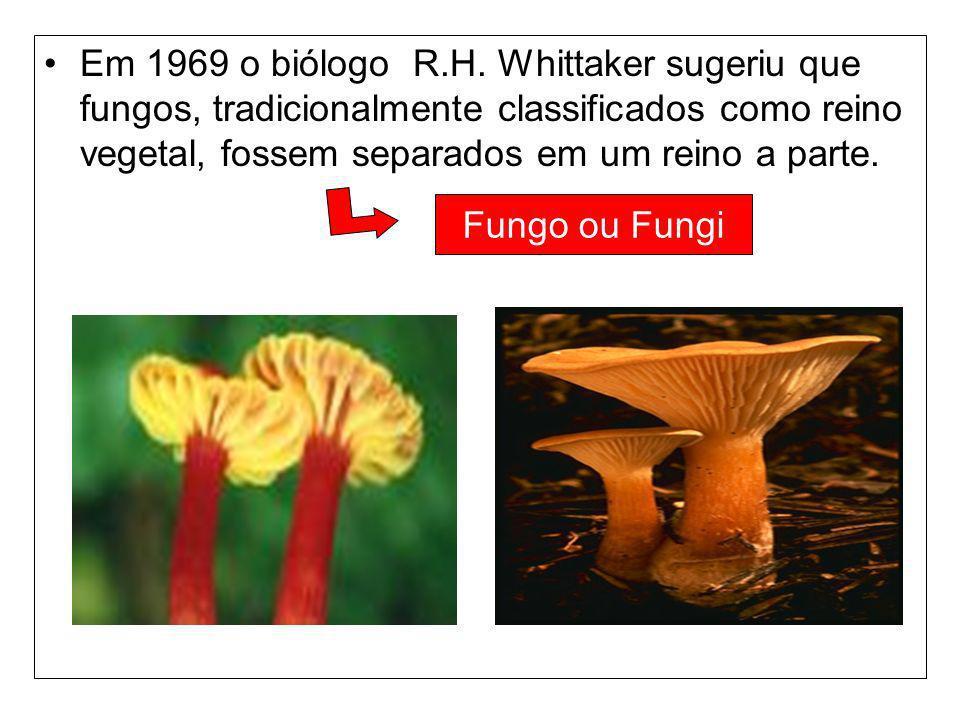Em 1969 o biólogo R.H. Whittaker sugeriu que fungos, tradicionalmente classificados como reino vegetal, fossem separados em um reino a parte. Fungo ou