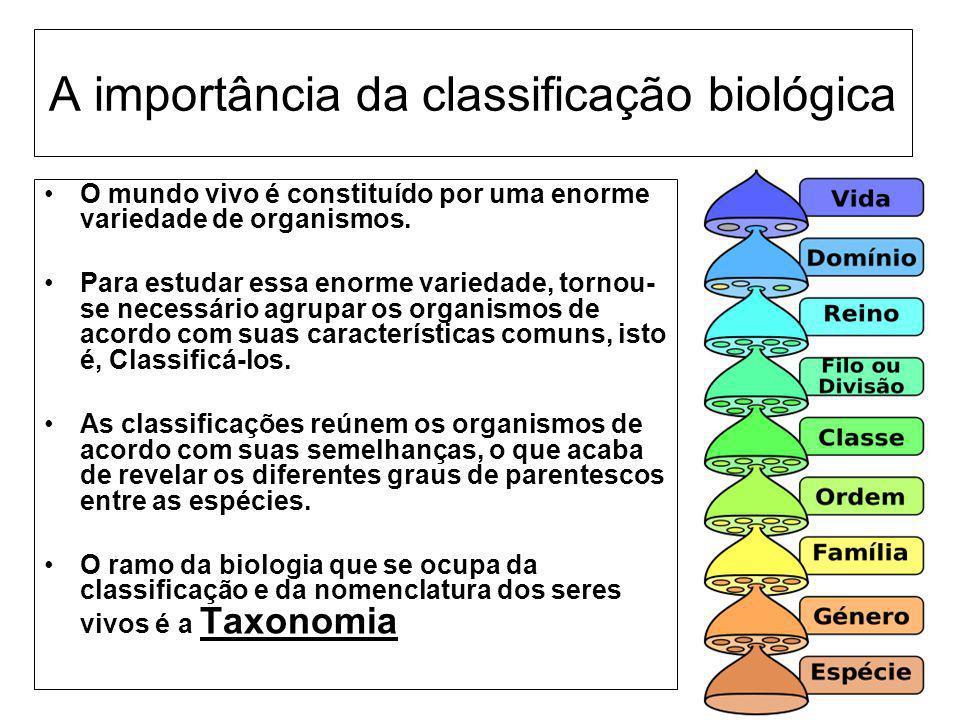 A importância da classificação biológica O mundo vivo é constituído por uma enorme variedade de organismos. Para estudar essa enorme variedade, tornou