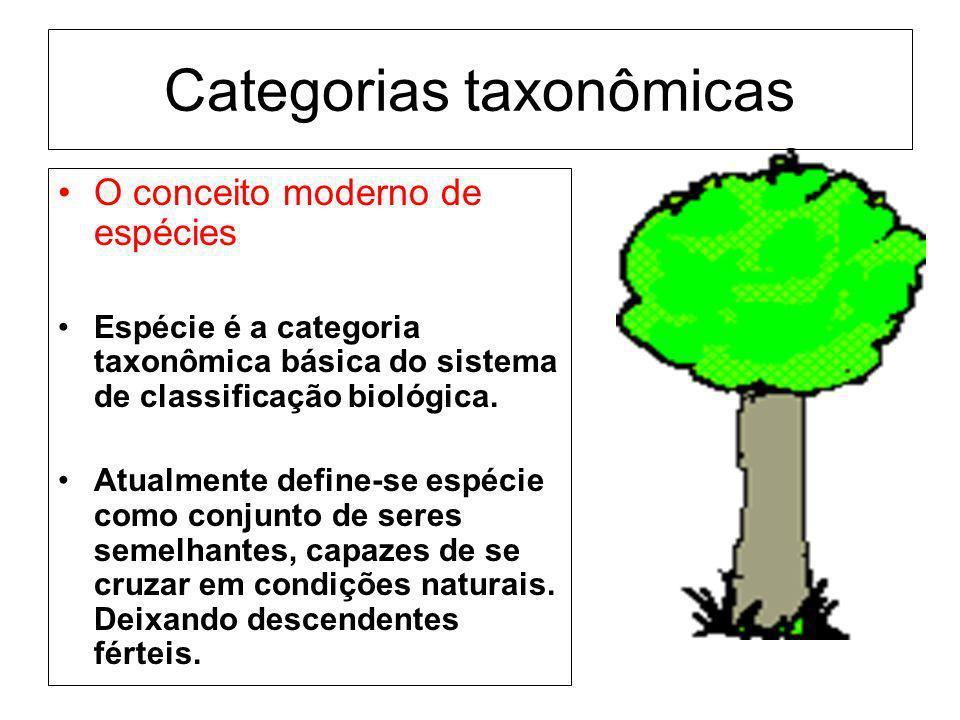 Categorias taxonômicas O conceito moderno de espécies Espécie é a categoria taxonômica básica do sistema de classificação biológica. Atualmente define