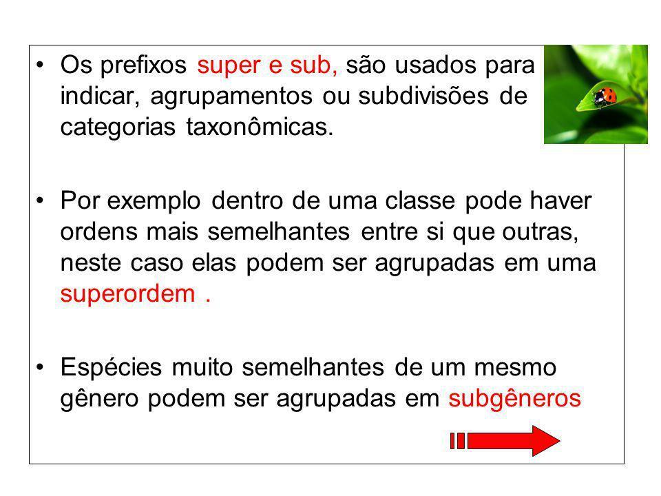Os prefixos super e sub, são usados para indicar, agrupamentos ou subdivisões de categorias taxonômicas. Por exemplo dentro de uma classe pode haver o