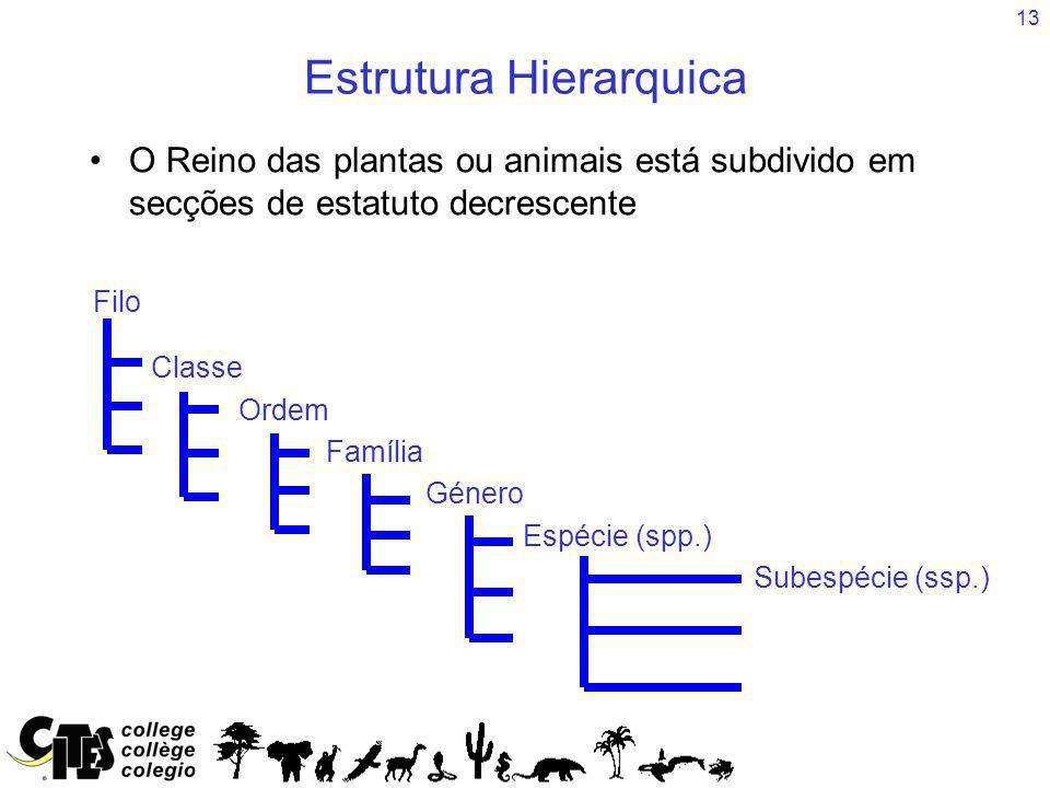 13 Estrutura Hierarquica O Reino das plantas ou animais está subdivido em secções de estatuto decrescente Classe Ordem Família Género Espécie (spp.) S