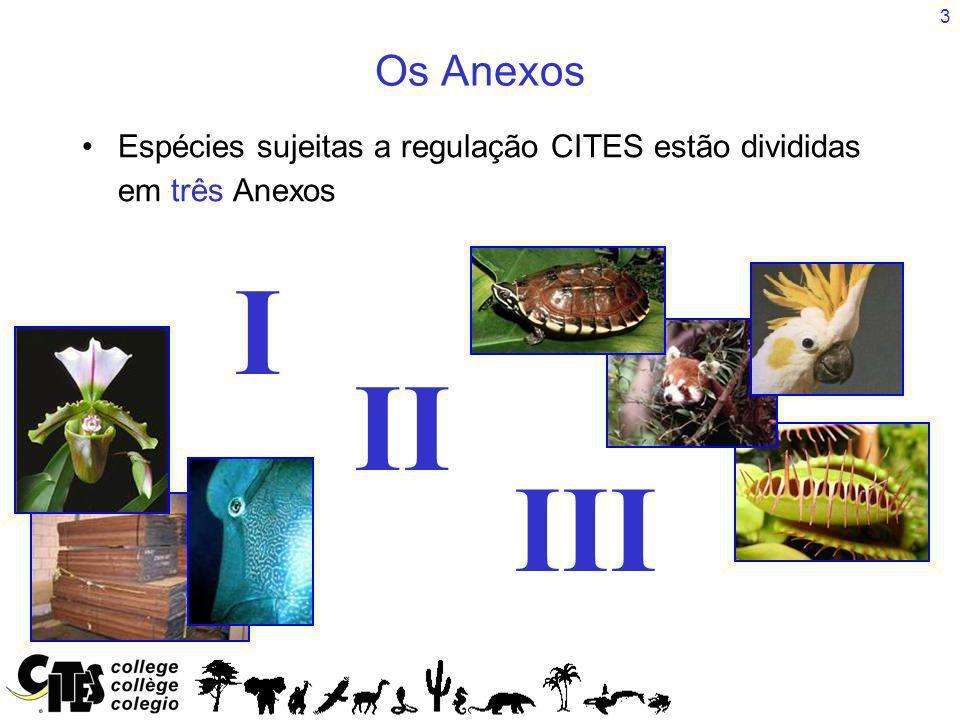 4 Os três Anexos (I, II e III) estão incluídos no mesmo documento http://www.cites.org/eng/app/2013/E-Appendices-2013- 06-12.pdf ou página web http://www.cites.org/eng/app/appendices.php Os Anexos estão divididos em duas secções, Fauna e Flora Como encontrar as espécies nos Anexos