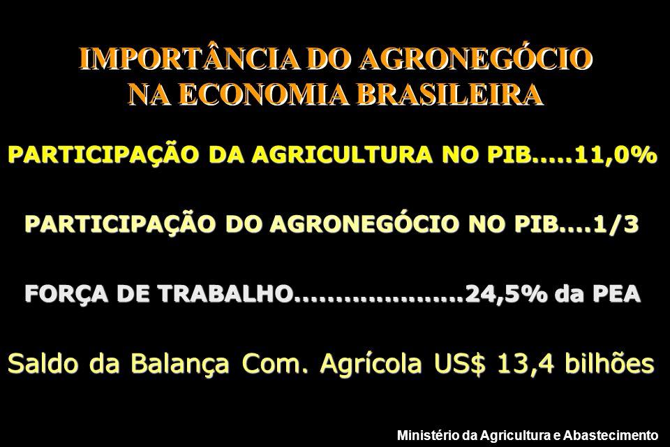 IMPORTÂNCIA DO AGRONEGÓCIO NA ECONOMIA BRASILEIRA PARTICIPAÇÃO DA AGRICULTURA NO PIB.....11,0% Saldo da Balança Com.