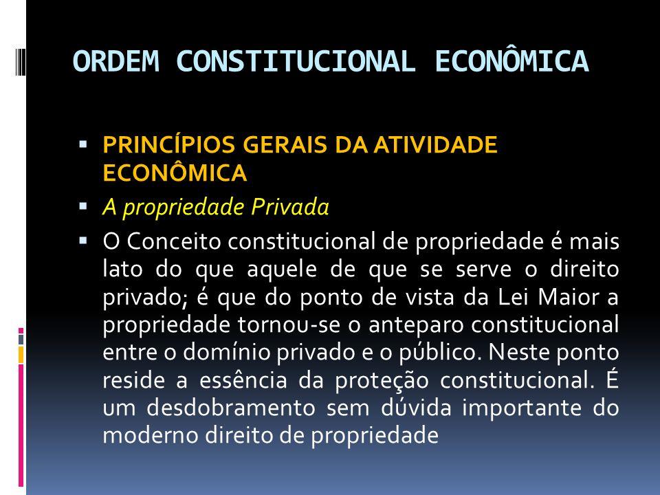 ORDEM CONSTITUCIONAL ECONÔMICA PRINCÍPIOS GERAIS DA ATIVIDADE ECONÔMICA A propriedade Privada O Conceito constitucional de propriedade é mais lato do que aquele de que se serve o direito privado; é que do ponto de vista da Lei Maior a propriedade tornou-se o anteparo constitucional entre o domínio privado e o público.