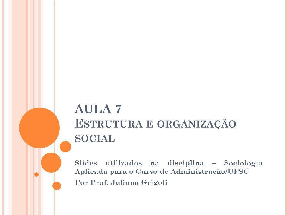 Estrutura e Organização Social: Abordaremos os conceitos de estrutura e de organização social a partir de dois enfoques: 1) Abordagem TRADICIONAL; 2) Abordagem de SISTEMAS.