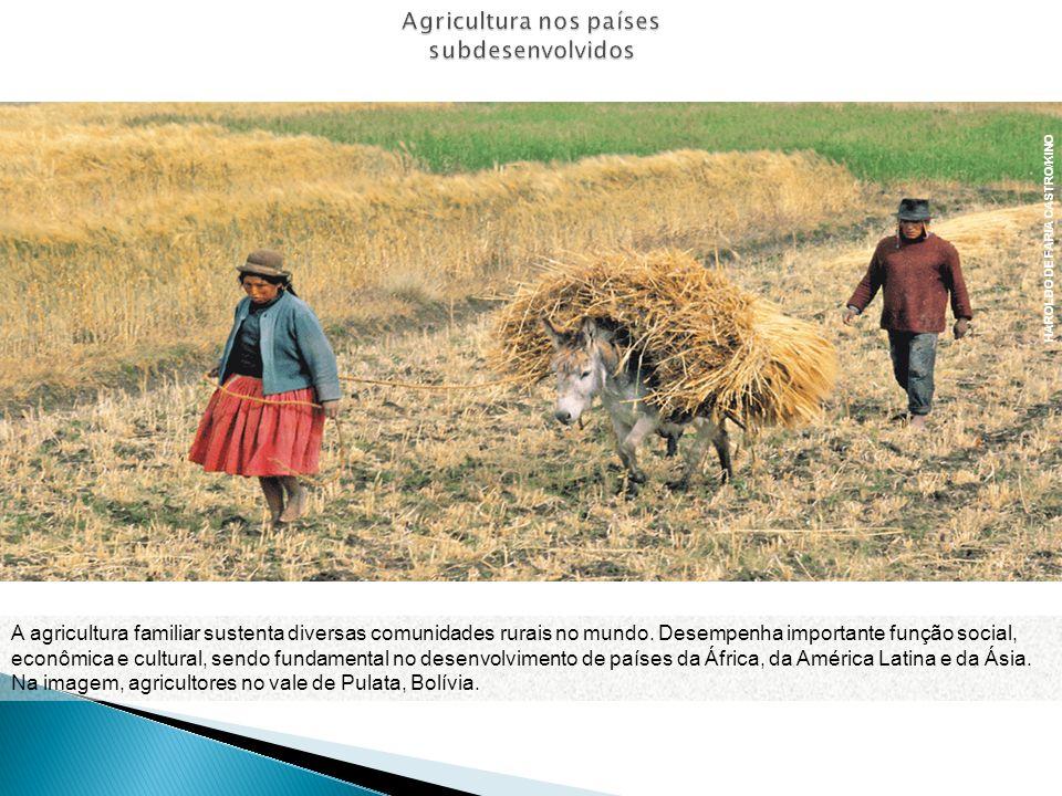 A agricultura familiar sustenta diversas comunidades rurais no mundo. Desempenha importante função social, econômica e cultural, sendo fundamental no
