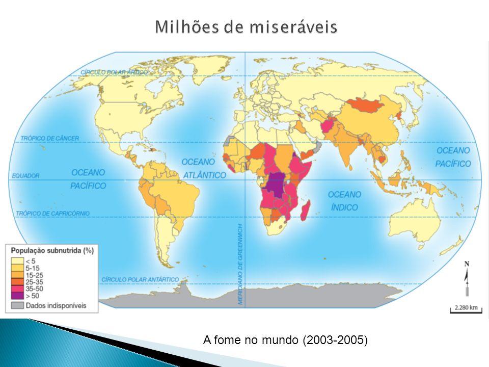 A fome no mundo (2003-2005)