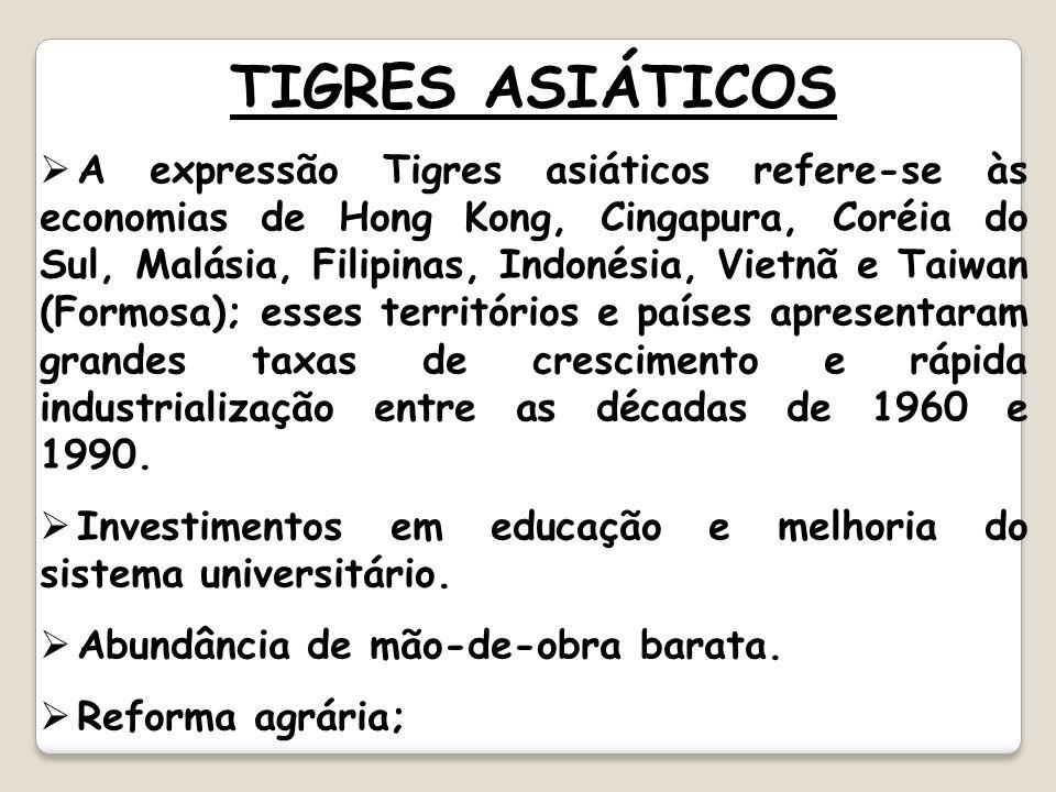 TIGRES ASIÁTICOS A expressão Tigres asiáticos refere-se às economias de Hong Kong, Cingapura, Coréia do Sul, Malásia, Filipinas, Indonésia, Vietnã e T