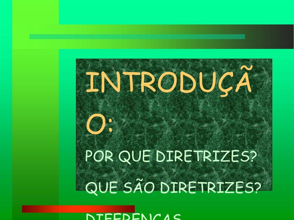 OBJETIVO GERAL +JUSTIFICATIVA +FUNDAMENTAÇÃO BÍBLICA E TEOLÓGICA +JUSTIFICATIVA +FUNDAMENTAÇÃO BÍBLICA E TEOLÓGICA AS MOTIVAÇÕES MAIS PROFUNDAS DE NOSSA FÉ PARA A AÇÃO EVANGELIZADORA AS MOTIVAÇÕES MAIS PROFUNDAS DE NOSSA FÉ PARA A AÇÃO EVANGELIZADORA O Objetivo Geral é o Centro de nossas Diretrizes É formulado a partir da nossa observação da realidade e da constatação dos desafios que nos provocam.