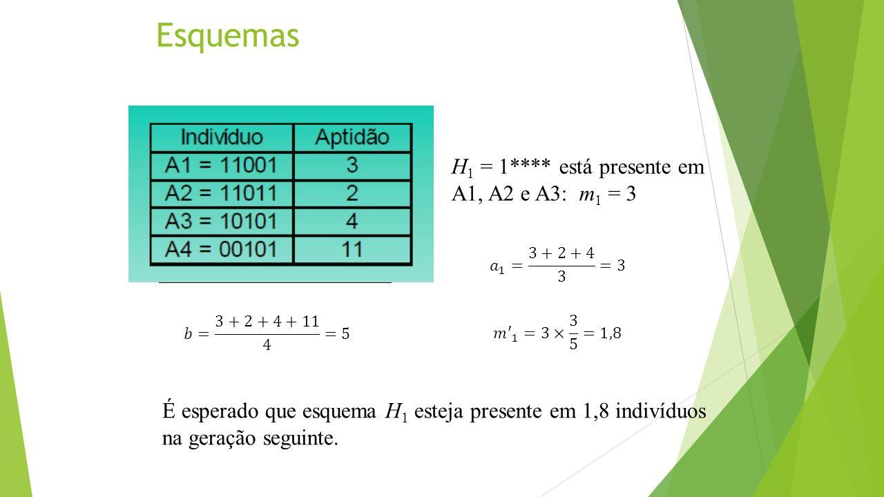 Esquemas H 1 = 1**** está presente em A1, A2 e A3: m 1 = 3 É esperado que esquema H 1 esteja presente em 1,8 indivíduos na geração seguinte.