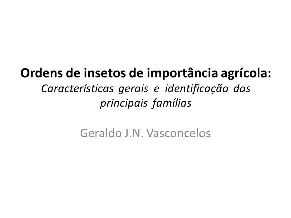 Ordens de insetos de importância agrícola: Características gerais e identificação das principais famílias Geraldo J.N. Vasconcelos