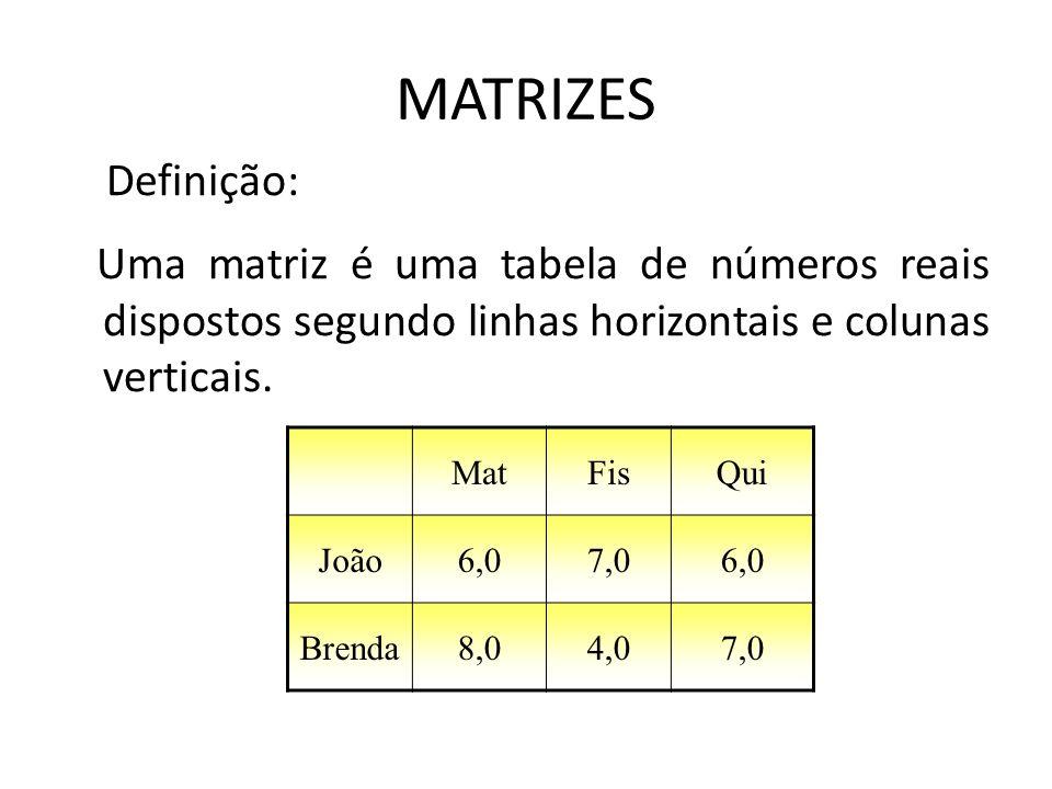 MATRIZES Definição: Uma matriz é uma tabela de números reais dispostos segundo linhas horizontais e colunas verticais. MatFisQui João6,07,06,0 Brenda8