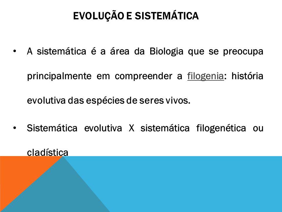 EVOLUÇÃO E SISTEMÁTICA A sistemática é a área da Biologia que se preocupa principalmente em compreender a filogenia: história evolutiva das espécies d