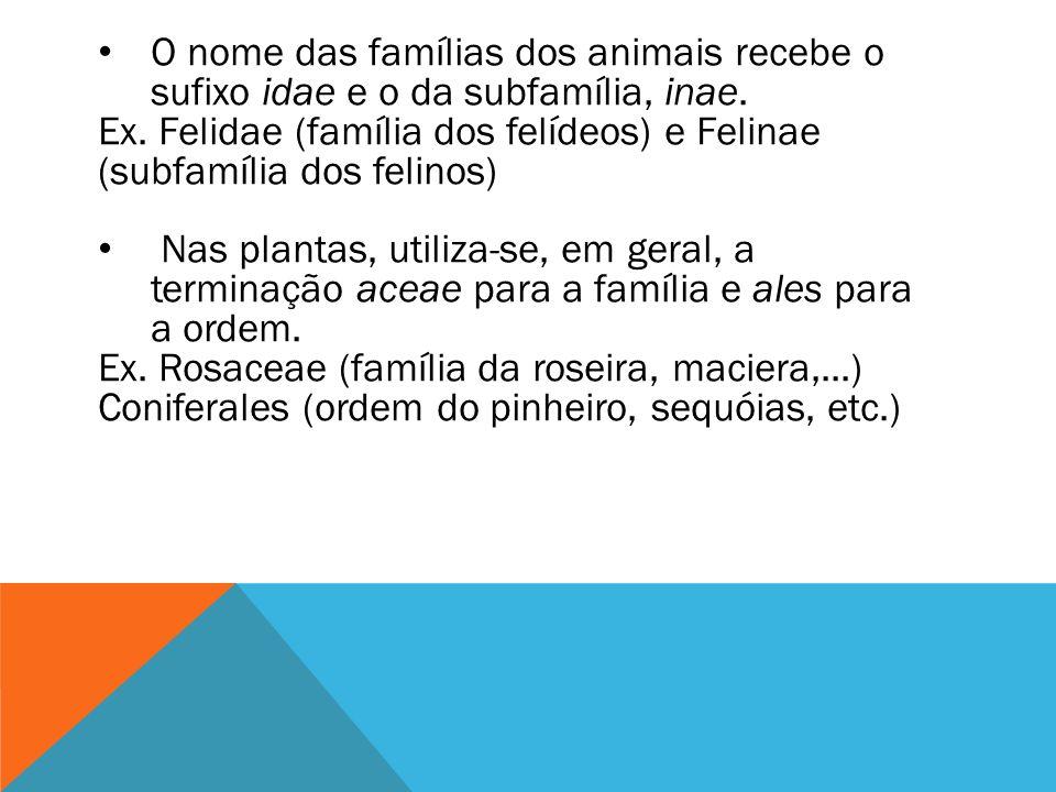 O nome das famílias dos animais recebe o sufixo idae e o da subfamília, inae. Ex. Felidae (família dos felídeos) e Felinae (subfamília dos felinos) Na