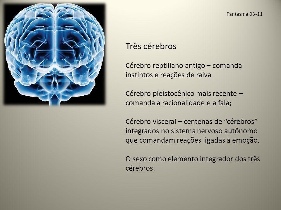 Fantasma 03-11 Três cérebros Cérebro reptiliano antigo – comanda instintos e reações de raiva Cérebro pleistocênico mais recente – comanda a racionalidade e a fala; Cérebro visceral – centenas de cérebros integrados no sistema nervoso autônomo que comandam reações ligadas à emoção.