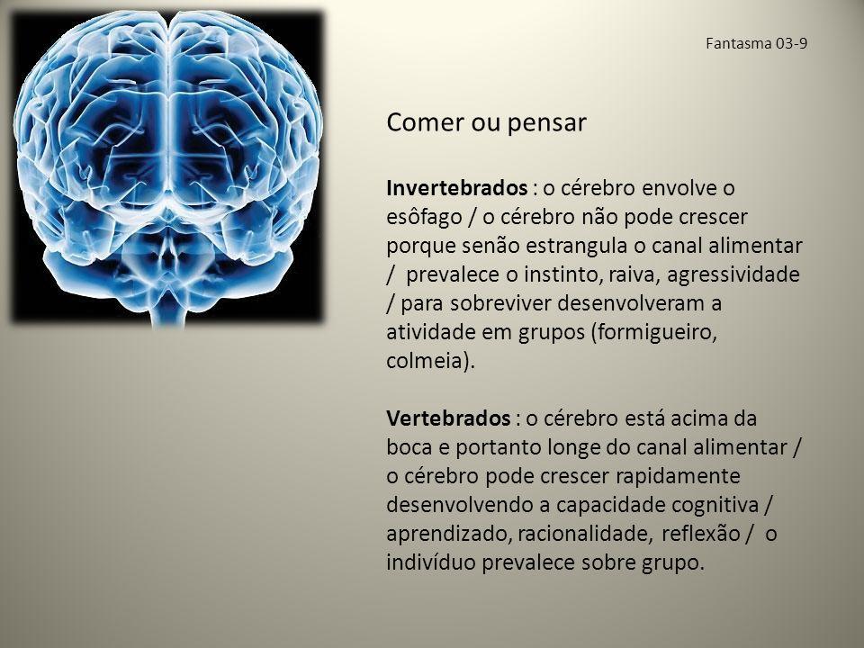 Fantasma 03-10 Emoção visceral Cérebro humano cresceu vertiginosamente há meio milhão de anos/ crescimento tumoroso.