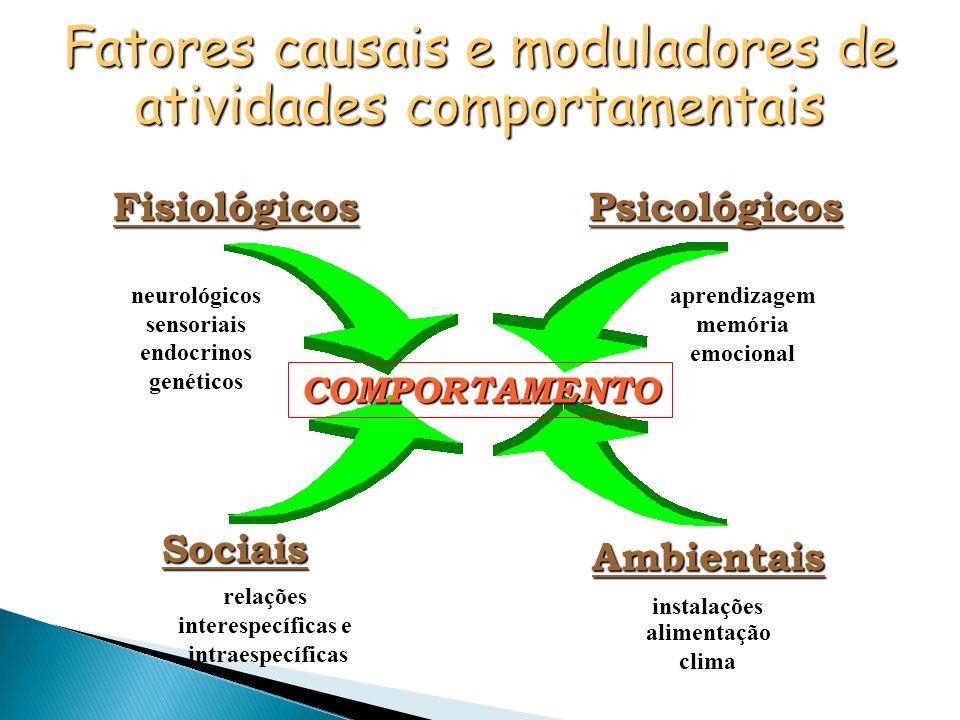 COMPORTAMENTO FisiológicosPsicológicos Sociais Sociais Ambientais neurológicos sensoriais endocrinos genéticos aprendizagem memória emocional relações