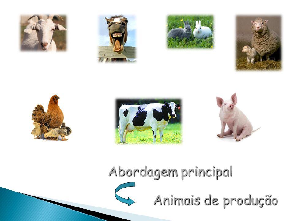 Abordagem principal Animais de produção Animais de produção