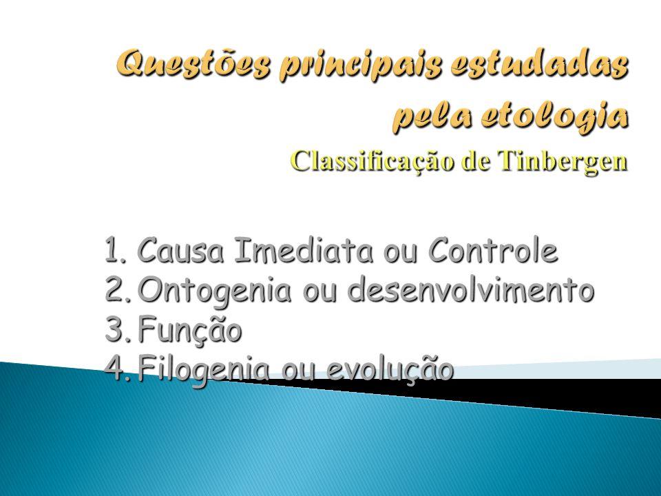 1.Causa Imediata ou Controle 2.Ontogenia ou desenvolvimento 3.Função 4.Filogenia ou evolução