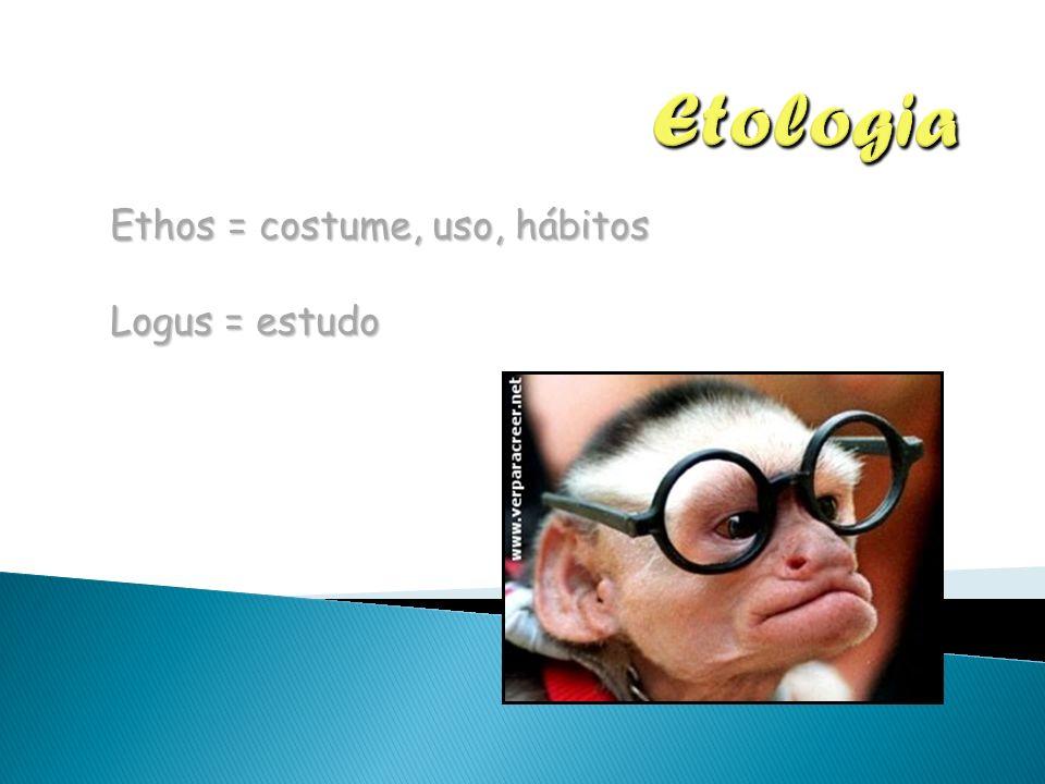 Ethos = costume, uso, hábitos Logus = estudo
