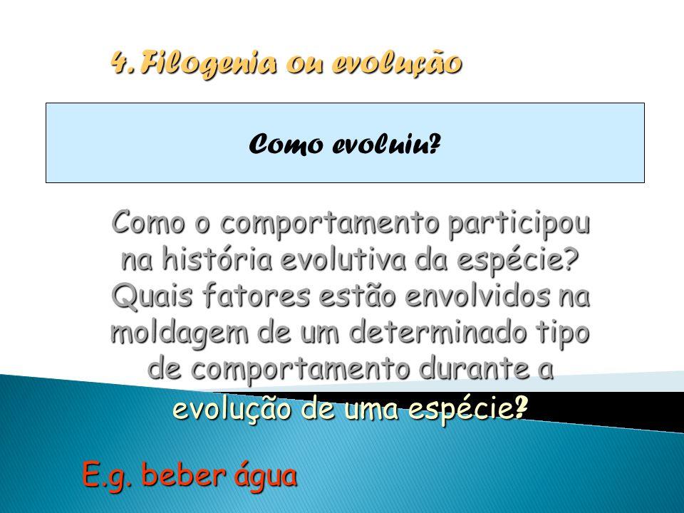 4. Filogenia ou evolução Como evoluiu? Como o comportamento participou na história evolutiva da espécie? Quais fatores estão envolvidos na moldagem de