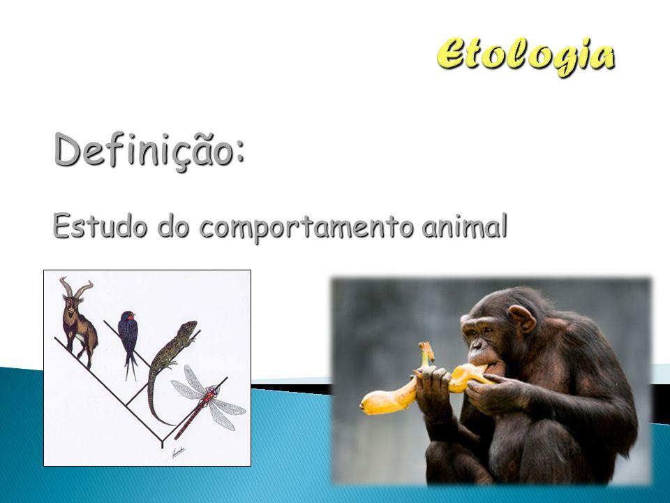 Definição: Estudo do comportamento animal