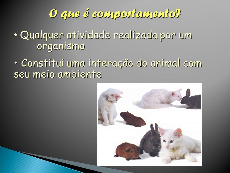 O que é comportamento? Qualquer atividade realizada por um organismo Qualquer atividade realizada por um organismo Constitui uma interação do animal c