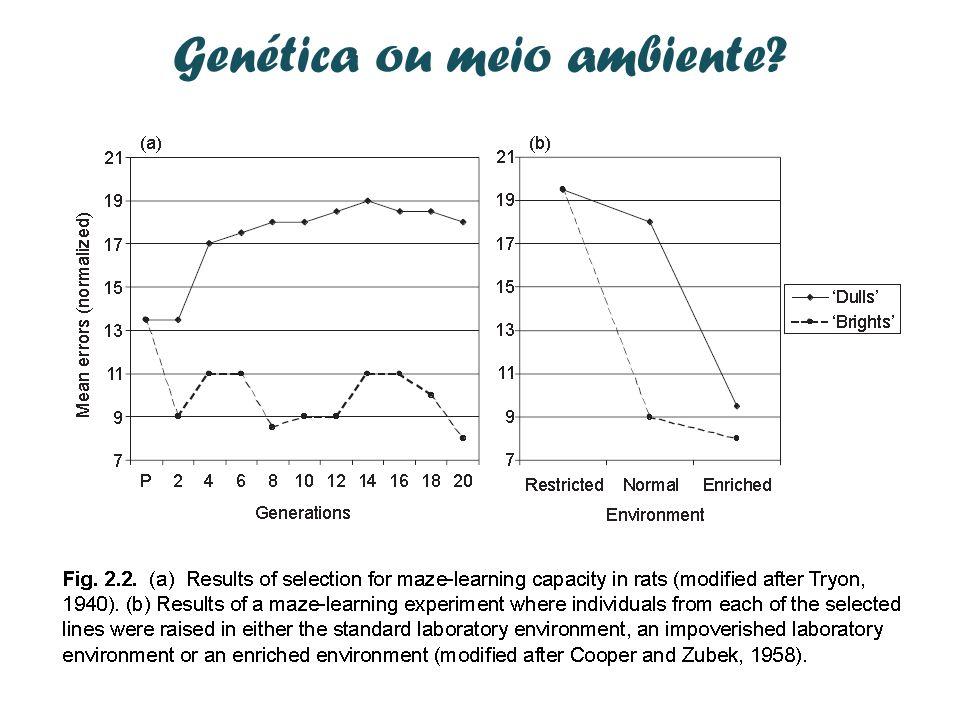 Genética ou meio ambiente?