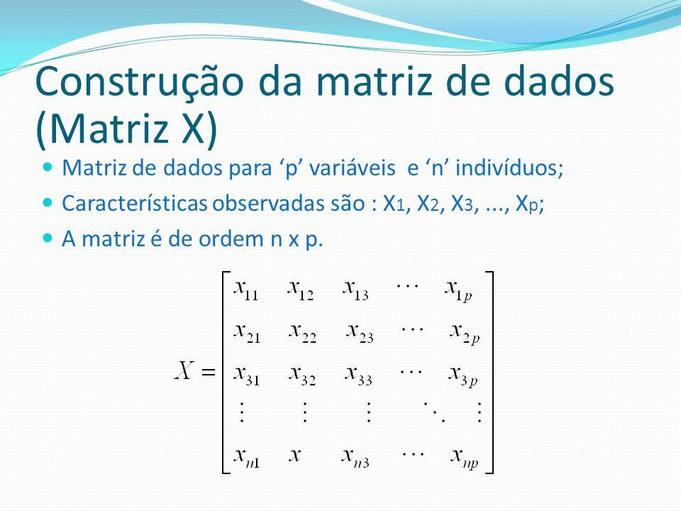 Construção da matriz de dados (Matriz X) Matriz de dados para p variáveis e n indivíduos; Características observadas são : X 1, X 2, X 3,..., X p ; A