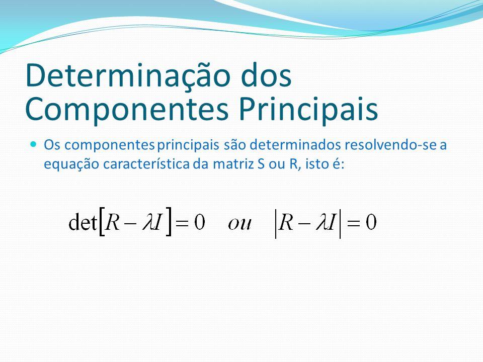 Determinação dos Componentes Principais Os componentes principais são determinados resolvendo-se a equação característica da matriz S ou R, isto é: