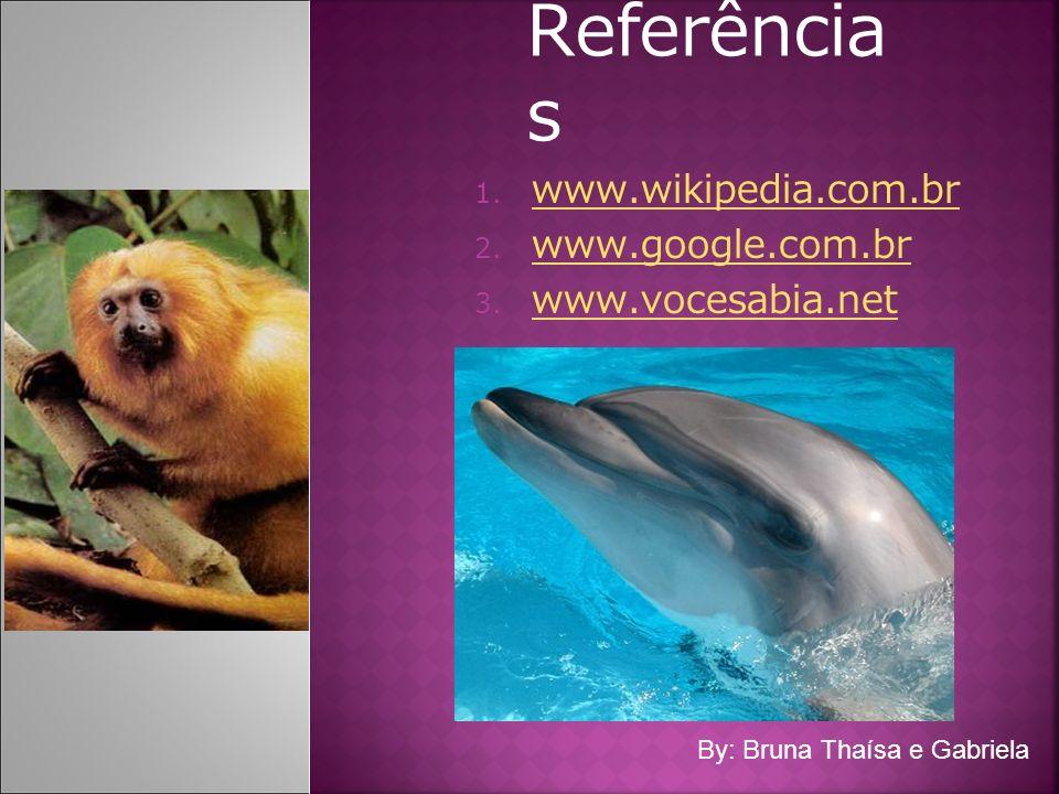 Referência s 1. www.wikipedia.com.br www.wikipedia.com.br 2. www.google.com.br www.google.com.br 3. www.vocesabia.net www.vocesabia.net By: Bruna Thaí