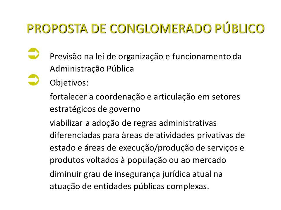 PROPOSTA DE CONGLOMERADO PÚBLICO Previsão na lei de organização e funcionamento da Administração Pública Previsão na lei de organização e funcionament