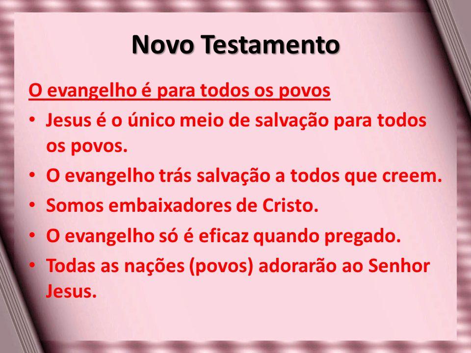 Novo Testamento O evangelho é para todos os povos Jesus é o único meio de salvação para todos os povos. O evangelho trás salvação a todos que creem. S