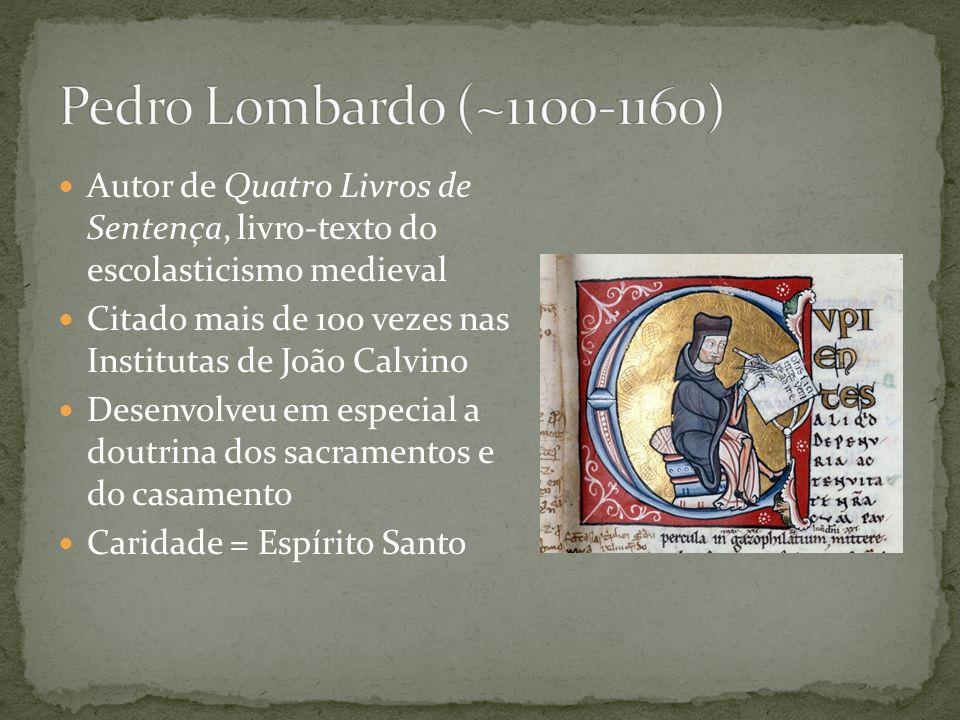 Voltou-se a uma vida de pobreza e de pregação itinerante Chamado de patrono dos animais e do meio-ambiente por seu amor à Criação Misticismo cristão Fundador da ordem conhecida mais tarde como franciscanos