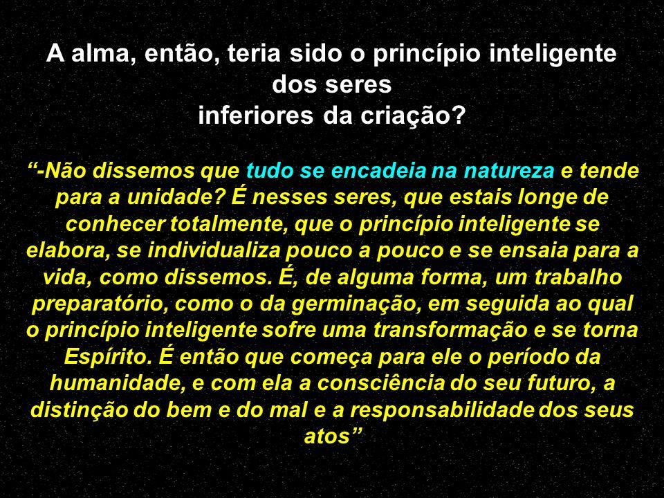 O princípio inteligente, distinto do princípio material, se individualiza, se elabora, em passando pelos diversos graus da animalidade; é aí que a alm
