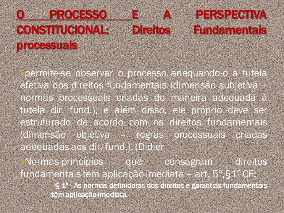 permite-se observar o processo adequando-o à tutela efetiva dos direitos fundamentais (dimensão subjetiva – normas processuais criadas de maneira adeq