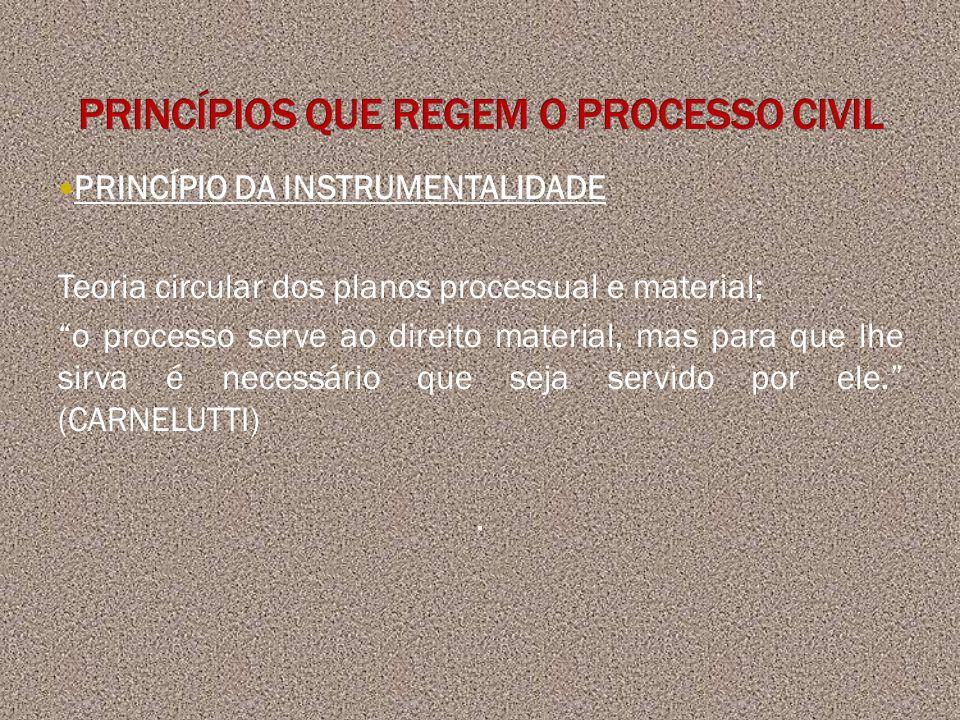 PRINCÍPIO DA INSTRUMENTALIDADE Teoria circular dos planos processual e material; o processo serve ao direito material, mas para que lhe sirva é necess