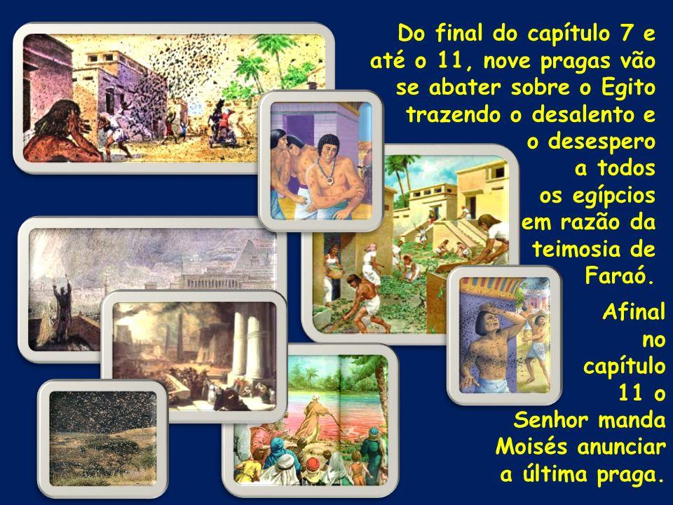 Do final do capítulo 7 e até o 11, nove pragas vão se abater sobre o Egito trazendo o desalento e o desespero a todos os egípcios em razão da teimosia