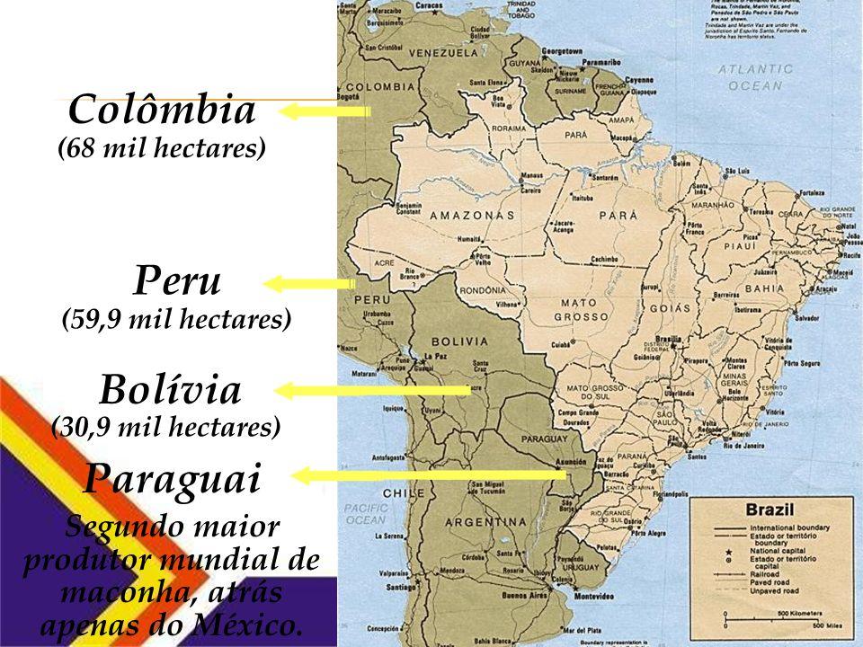 Colômbia (68 mil hectares) Peru (59,9 mil hectares) Bolívia Terceiro maior produtor mundial de cocaína, com 30,9 mil hectares de cultivo de coca.