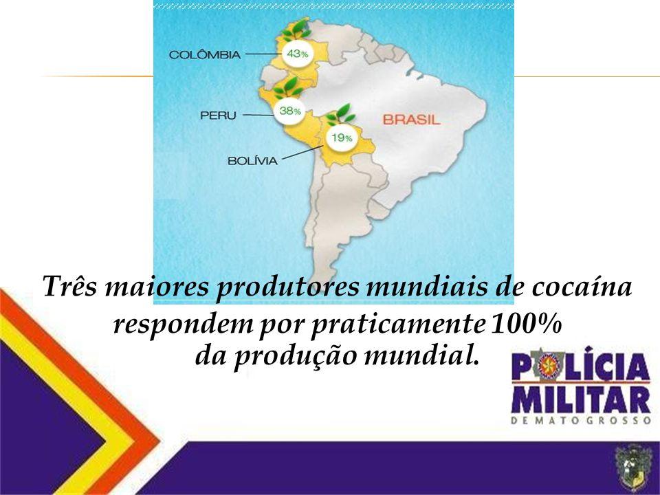 Colômbia (68 mil hectares) Peru (59,9 mil hectares) Bolívia (30,9 mil hectares) Paraguai Segundo maior produtor mundial de maconha, atrás apenas do Mé