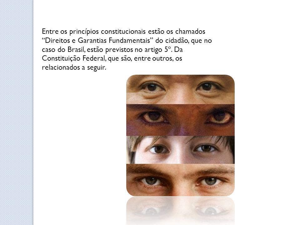 Entre os princípios constitucionais estão os chamados Direitos e Garantias Fundamentais do cidadão, que no caso do Brasil, estão previstos no artigo 5