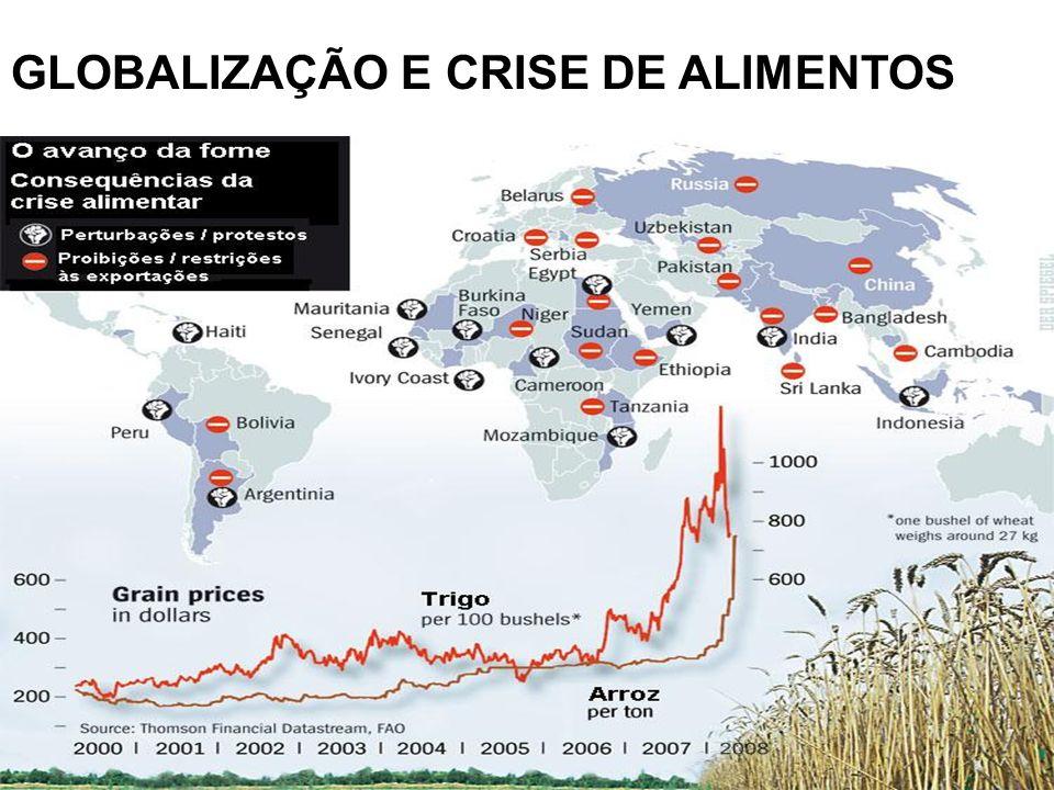 GLOBALIZAÇÃO E CRISE DE ALIMENTOS