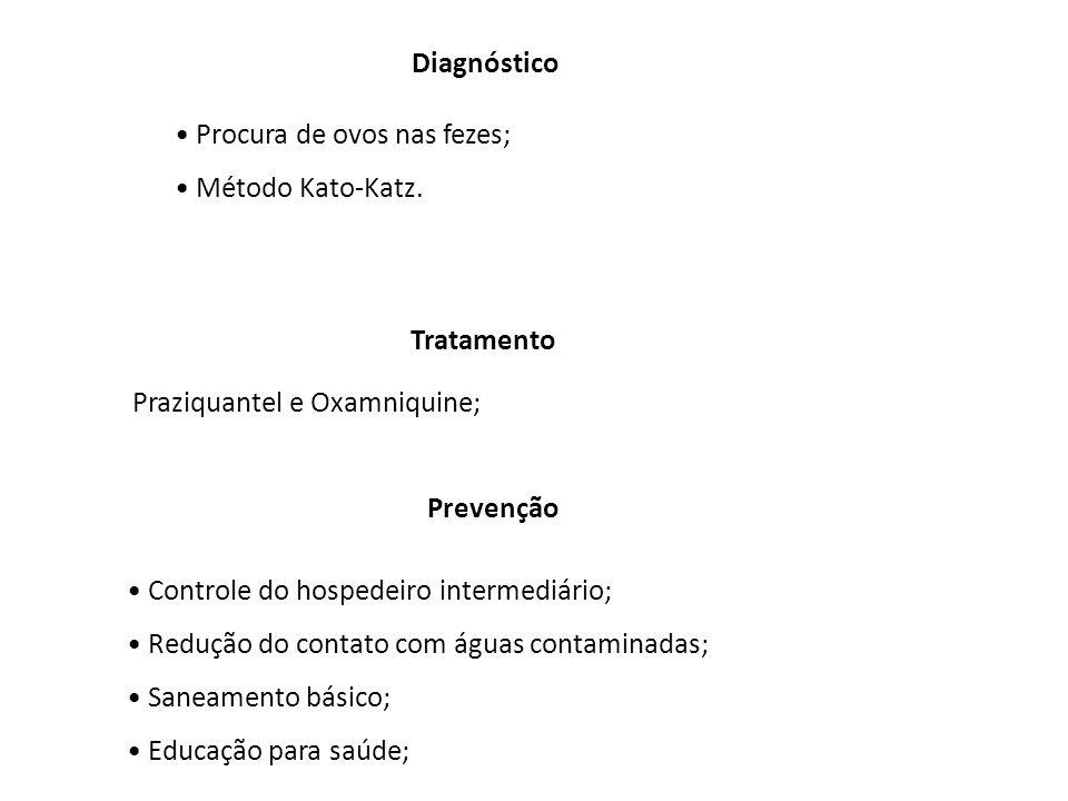 Diagnóstico Procura de ovos nas fezes; Método Kato-Katz. Tratamento Praziquantel e Oxamniquine; Prevenção Controle do hospedeiro intermediário; Reduçã