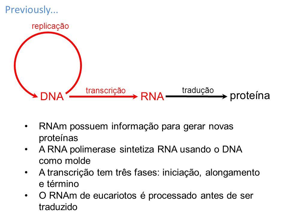 Previously... RNA proteína DNA replicação transcrição tradução RNAm possuem informação para gerar novas proteínas A RNA polimerase sintetiza RNA usand